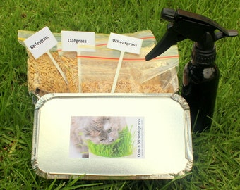 Petgrass Grow Kit Gift Pack/Contains 3 seed varieties plus all you need to begin