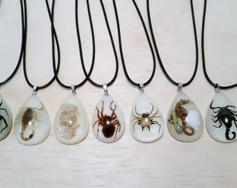 Necklace with Real Seahorse | Scorpion | Spider | Crab | Beetle. ***Glows in the Dark!*** Unique Necklace. Bugs in Resin. Taxidermy Necklace