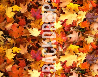 Large Photography Backdrops- Leaves- 5'x5', 5'x6', 5'x7', 5'x10'