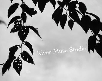 Riverbank Eve