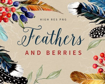 FEATHERS & BERRIES - Watercolor Clipart Graphics