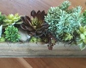 Simple and Sleek Wood Planter with Faux Succulents Arrangement - FREE SHIPPING