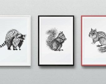 Animal prints (set of 3)
