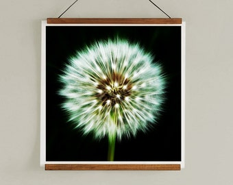 Photography Print -  Dandelion Print, Abstract Print, Minimalist Art Print, Wall Art, Minimalist Photography Print Photography Abstract Art