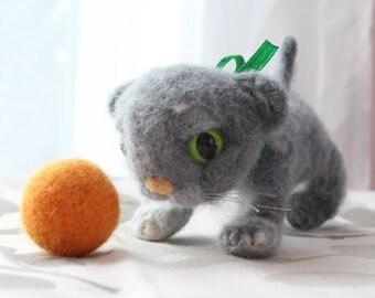 Playful Kitten with Ball