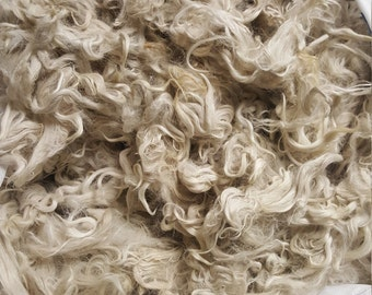 Raw Suri Alpaca fleece