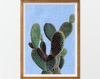 Cactus Photography Desert Art Print, Desert Photography Garden Photography, Botanical Art