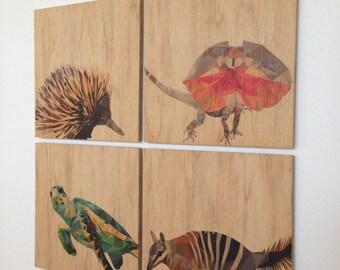 Set of four 15 x 15 cm ply prints