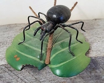 Cute pet black Spider on green leaf with spider web too cute to be afraid of Vintage