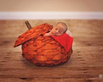 Newborn Fall Pumpkin Digital Backdrop