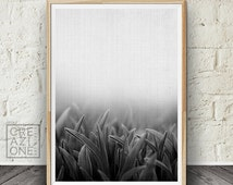 Grass print, Printable nature wall art, Macro photography, Black and white decor, Scandinavian, Modern print, Botanical poster, Minimal #052