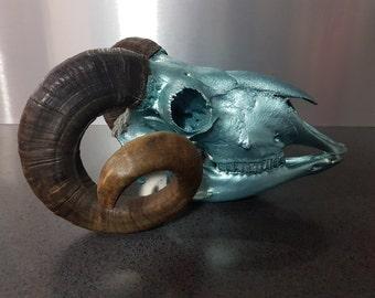 Real Painted Ram Skull
