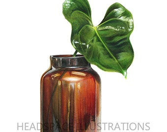 Amber Glass & Botanical Leaf Plant Drawing Garden Green Houseplant Plant Shiny Stem Colored Pencil Art Print by Headspace Illustrations