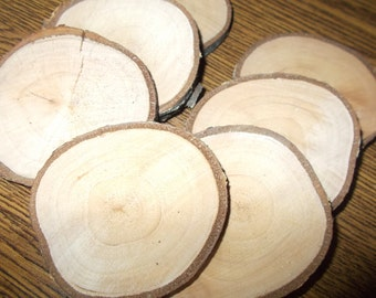 50 birch tree slices, birch slices, wood slices, large slices, 3 -3.5 inch,  Natural Wood Slices, table decor, wood decor