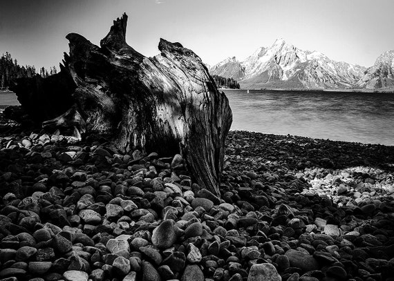 No. 017 | Grand teton driftwood art wall photo print 8x10 11x14 16x20 gift present holiday christmas best top popular selling seller sale