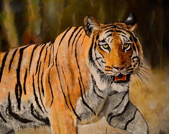 Tiger painting 24''x 30""