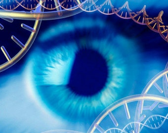 12 Strand DNA Activation