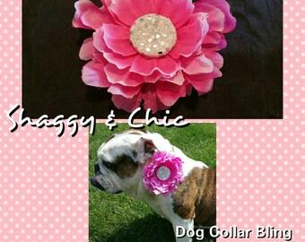 Adorable Dog Collar Bling Item #201