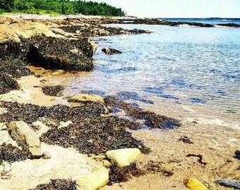 Maine Coast - Fine Art Photography Canvas, Matboard and Print