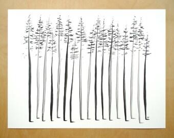 16x12 spruce trees art print