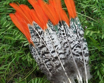 Free shipping manufacturers selling DIY pheasant feathers /jewelry accessories/copper chicken feathers 10-12 inches