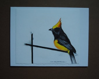 Yellow Bird Drawing