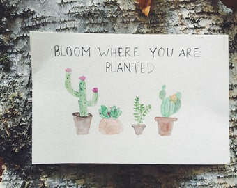 Bloom Where You Are Planted - Watercolor Quote