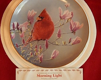 Morning Light Collector Plate