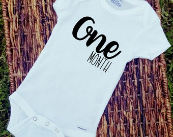 12 month count month onesies baby tee baby onesie