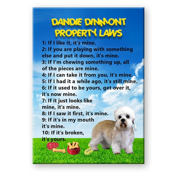 Dandie Dinmont Property Laws Fridge Magnet
