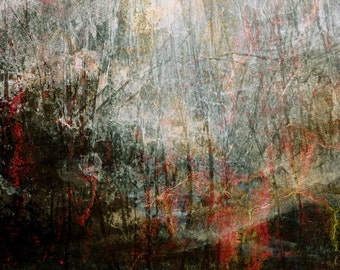 Misty,  Limited Edition fine art Giclee print