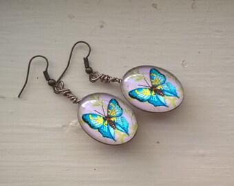 Blue Butterfly Glass Earrings