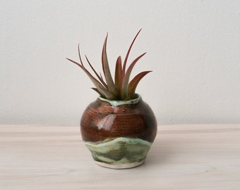 Mini Vase for Air Plant or Baby Cactus; Ready to Ship