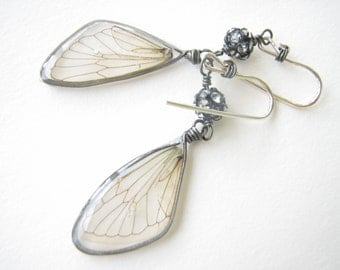 Cicada wings and rhinestone earrings