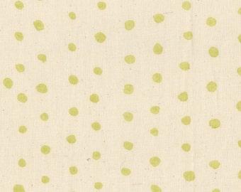 Nani Iro Kokka Japanese Fabric Pocho Basic - wakaba - 50cm