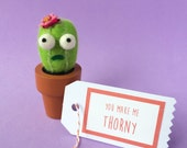 Scaredy Cat Cactus with Your Choice of Message