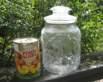 Vintage Glass Canister/ Storage Jar - Large Embossed Fruit Jar