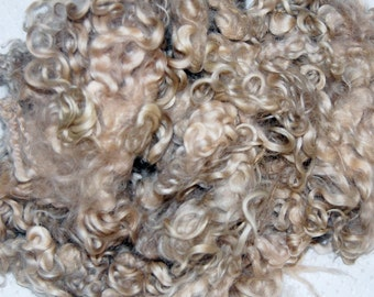 Cotswold wool locks,  Wool Doll Hair, Blythe Doll Reroots, Curly Doll Hair, Locks for Spinning, Felting, Blond 1 oz.