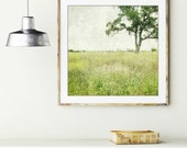 """Landscape photography - green wall art - oak tree in meadow - minimal landscape - rustic photograph 8x8 20x20  """"Stay a While"""""""