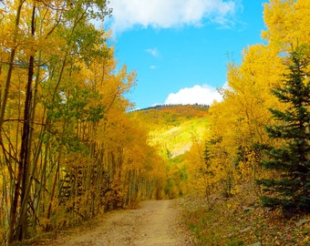 Fall Colors Aspen Leaves Turning Sangre de Cristo Mountains Santa Fe New Mexico Landscape Giclee Fine Art Nature Photography Autumn Leaves