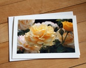 Yellow Roses Greeting Card, Blank Greeting Card, Note Card, Mother's Day, Birthday Card, Envelope, Photography, Photograph, Flowers, Girl