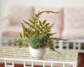 1:6 Scale Miniature White Round Vase Plant Fern Moss Arrangement Blythe Momoko Pullip Barbie Fashion Royalty Doll House