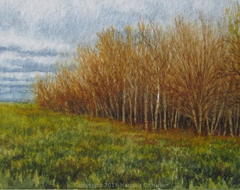 Edge of the Wood, tiny original watercolour painting, ACEO