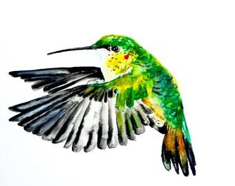 "Watercolor Hummingbird, Original Art, Painting 9""x12"""