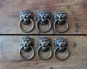 Six Brass Lion's Head Drawer Pulls, Vintage Hardware, Figural Pulls, Rustic Modern Home, Supplies