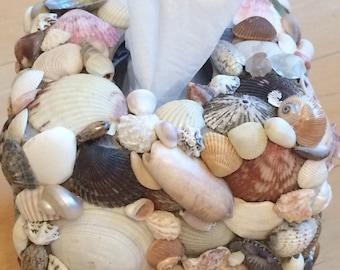 Seashell Tissue Box