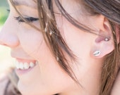 Sterling Silver Cowrie Shell Earrings, Ecofriendly Silver Earrings, Sterling Silver Stud Earrings, Silver Shell Stud Earrings