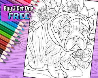 English Bulldog Puppy - Adult Coloring Book Page - Printable Instant Download