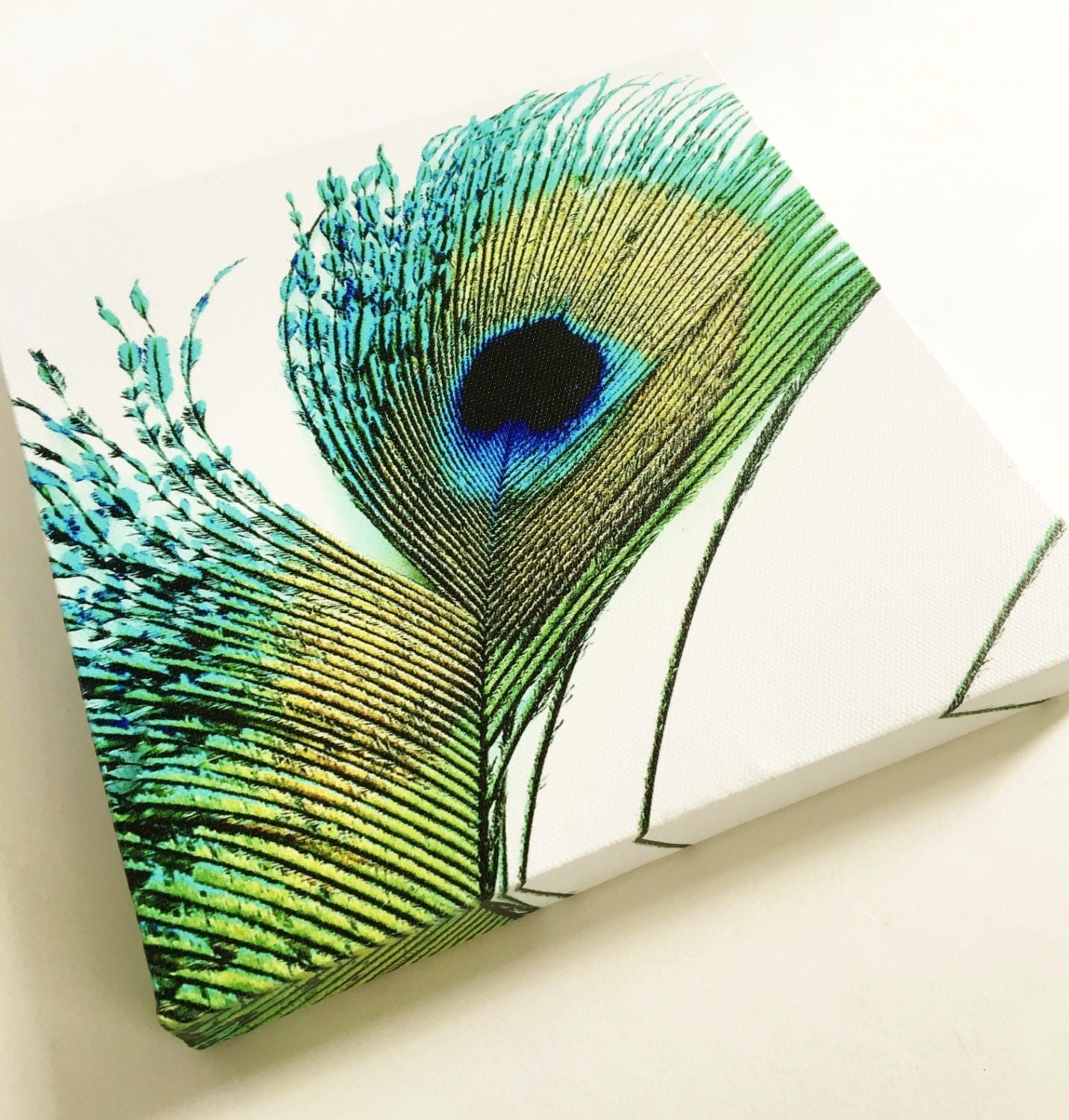 Peacock wall art canvas art print peacock decor peacock for Peacock wall art