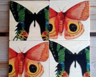Moths! wooden coaster set